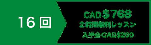アカデミック 英文 ライティング 講座 コースレッスン16回 CAD$672 | 2時間無料レッスン | 入学金CAD$200