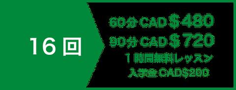 セミプライベートレッスン12回 CAD$312 | 1時間無料レッスン | 入学金CAD$200