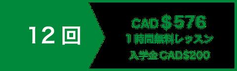 アカデミック 英文 ライティング 講座 レッス12回 CAD$504   1時間無料レッスン   入学金CAD$200