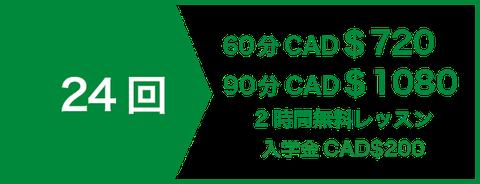 英会話 セミプライベートレッスン16回 CAD$336   2時間無料レッスン   入学金CAD$200