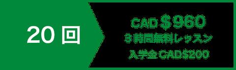 アカデミックエッセイライティングコースレッスン20回 CAD$840   3時間無料レッスン   入学金CAD$200