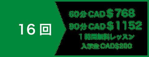 英会話プライベート(マンツーマン)レッスン12回 CAD$420   1時間無料レッスン   入学金CAD$200