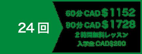 プライベート(マンツーマン)レッスン16回 CAD$672 | 2時間無料レッスン | 入学金CAD$200