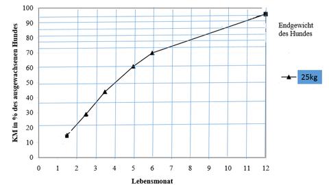 Wachstum von Welpen, mittelgroße Rassen 20-25kg Körpermasse