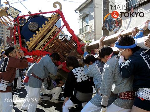 「若駒會」成人式神輿渡御, 2017年1月15日
