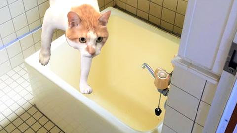 感知器の無いトイレや浴室も警戒区域の面積に含まれる