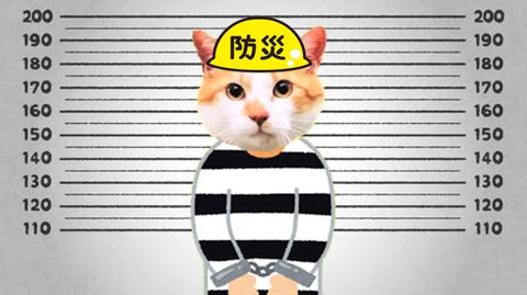 消防法違反で逮捕