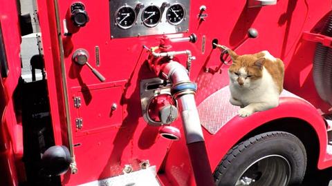 消防ポンプ車と同様の機器を使用する場合