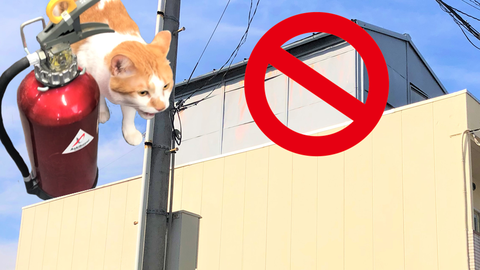 屋上への増築は消防法上 建築基準法