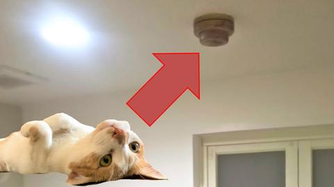 天井の感知器が自動で火災を報知