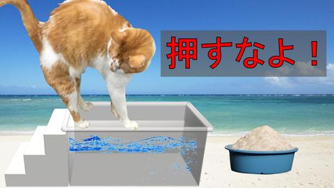 熱湯風呂の『押すなよ!』の意味