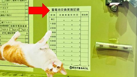 白紙の蓄電池交換実施記録