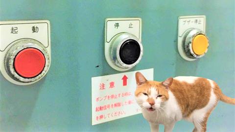 """消火ポンプ制御盤のみ""""停止"""""""