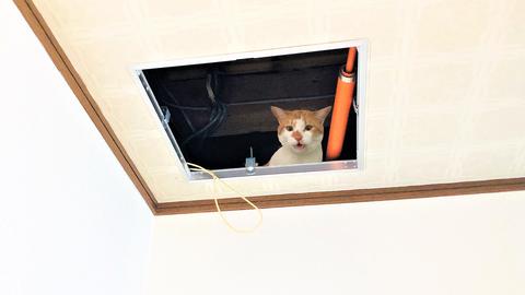 受信機上の天井に設けた点検口