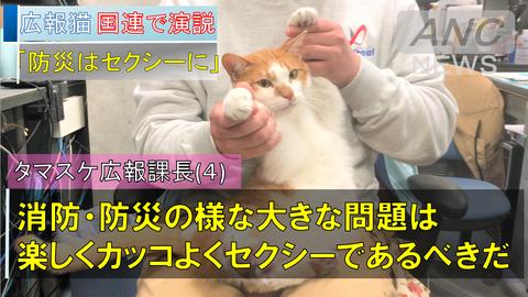 小泉進次郎 タマスケ広報課長