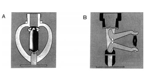 スプリンクラーヘッド模式図