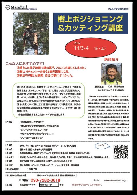 「2017年11月3日(金)〜4日(土)樹上カッティングの講習会」案内チラシ