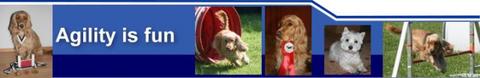 Elke Gruber und ihre Activ Dogs