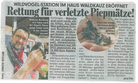Der Saarländische Umweltminister Reinhold Jost mit einer jungen Taube, die es in die neue Wildvogelsation in Püttlingen geschafft hat