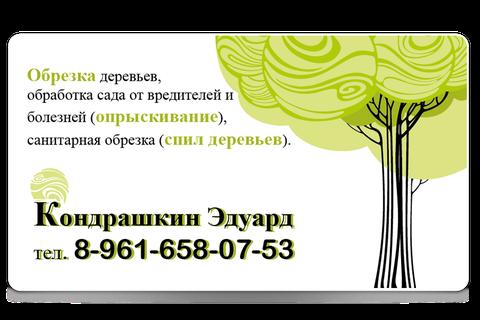 Kondrashkin  businesscard