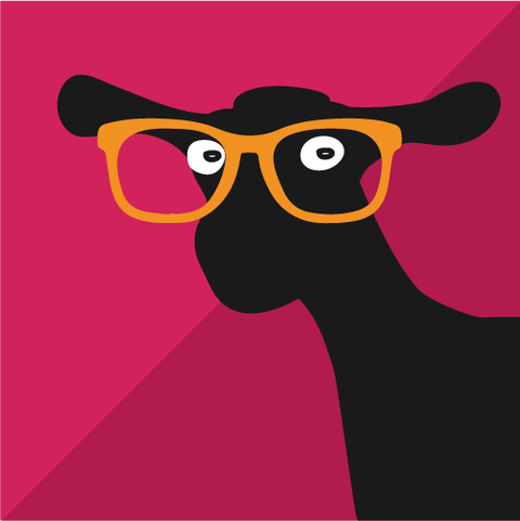 Goats on the Coast graphic design project teaser, Design By Pie, North Dervon