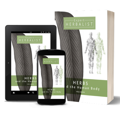 ebook design for Expert Herbalist Brandinng, Design By Pie, Graphic Designer