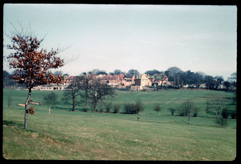 Harborne Village viewed from Gravel Bank 1961. Photograph by Phyllis Nicklin - see Acknowledgements Keith Berry.