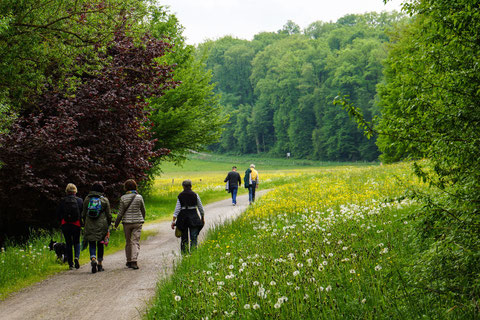 Wandergruppe im Maurener Tal bei Böblingen. Foto Rainer Sturm