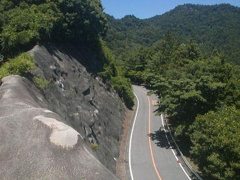 交通量が少なく走りやすい鳳来寺山パークウェイ