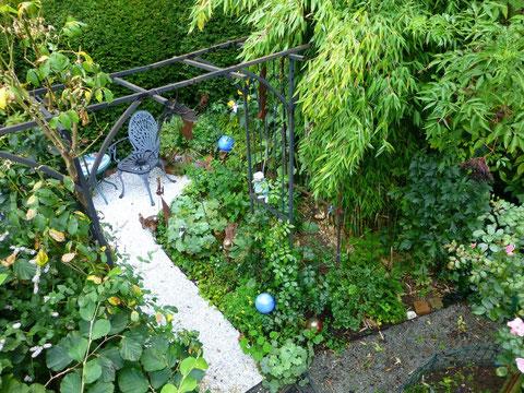 Elfen-Ein-Blick: Bambus, Rosen, Taxus, Hamamelis