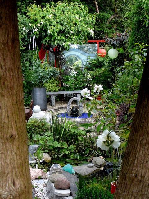 Thujastamm, Gartenteich, Seerose