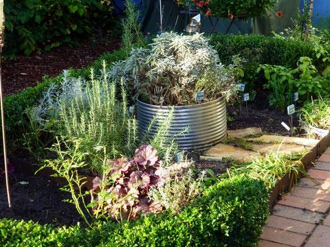 Teil des neuen Kräuter- Garten- Zimmers, SonnenKräuterbeet