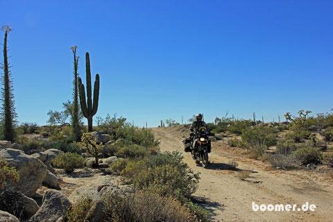 Unterwegs auf der Baja