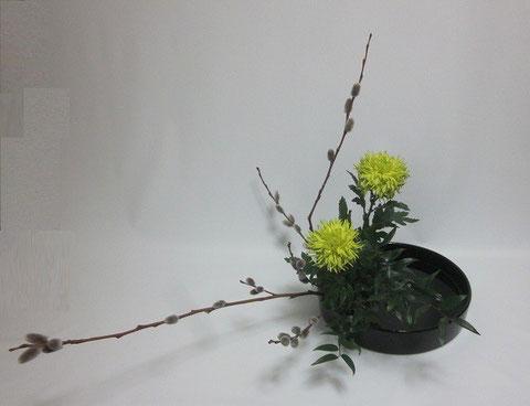 2014.3.28 傾斜型                by Maoさん