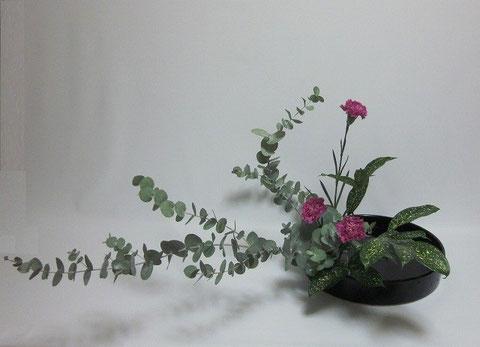 2013.9.13 傾斜型        by Hayatoさん