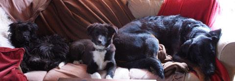 Ja...für 4 war das Sofa nicht gross genug :-)
