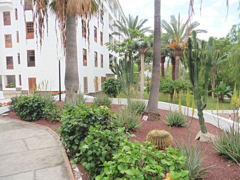 Rechts im Bild sieht man man den Garten, mit subtropischen Pflanzen und vielen Palmen, der Wohnanlage und links das Haus.