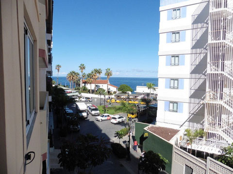 Im Hintergrund des Bildes sieht man das Meer und den Horizont im Vordergrund ist die Strasse mit Palmen zu sehen die zum Strand führt.