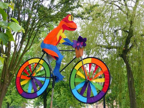 Frosch auf dem Rad, Spinnaker