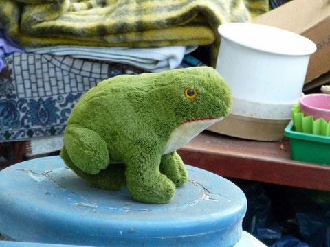 Frosch aus Plüsch