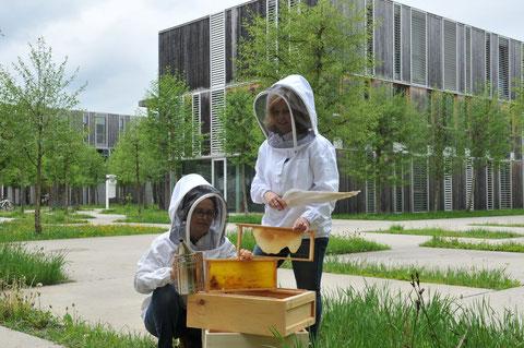 Imkerinnen der Stadtbienen Klagenfurt am Wörthersee
