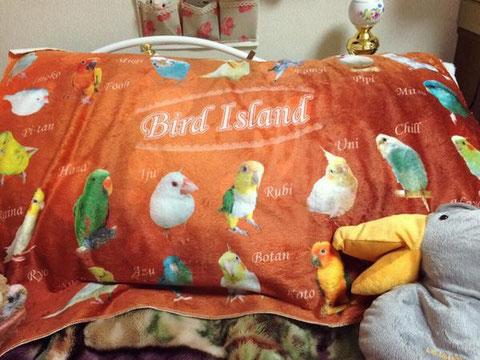鳥づくしブランケット 写真