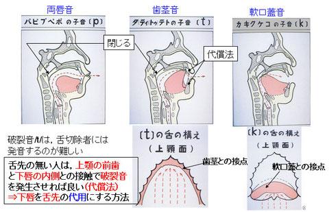 図8 破裂音の舌の構え