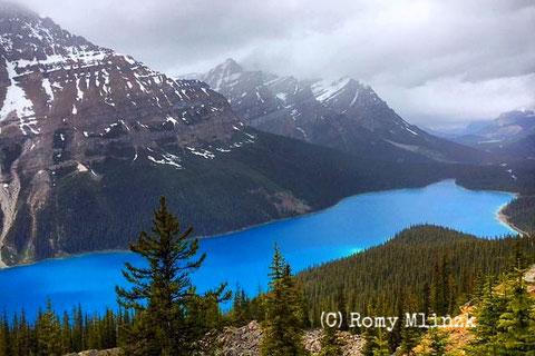 Peyto Lake (C) Romy Mlinzk/snoopsmaus