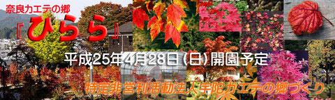 奈良カエデの郷「ひらら」