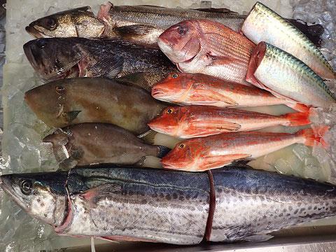 魚 寿司 出前 年末年始営業中