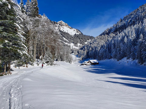 Skitour, Hagelstock, Lidernen, Uri, Riemenstalden, Chäppeliberg, Lidernenhütte, Switzerland, Abfahrt Rotenbalm, Höch Wald