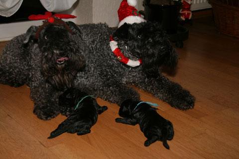 Familiengaudi zu Weihnachten
