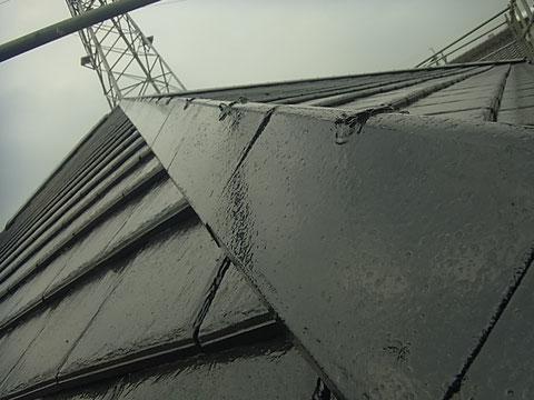 熊本市〇様家の屋根塗装完成を接写撮影。