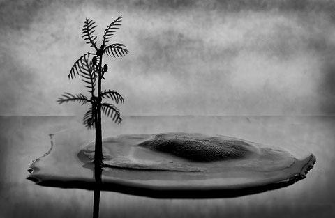 Foto: © Emilio Castro